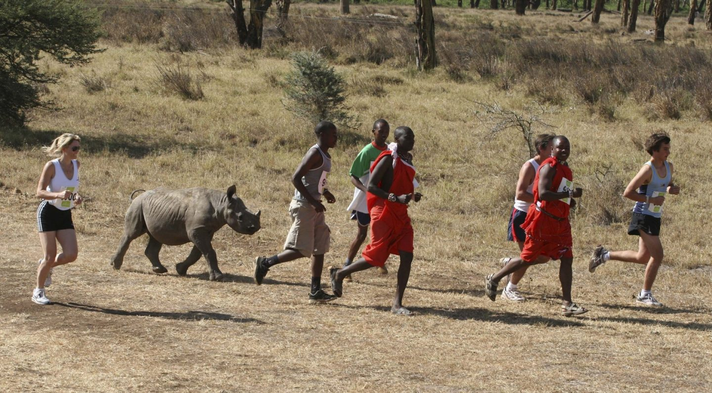 Safaricom Marathon Runners and Rhino