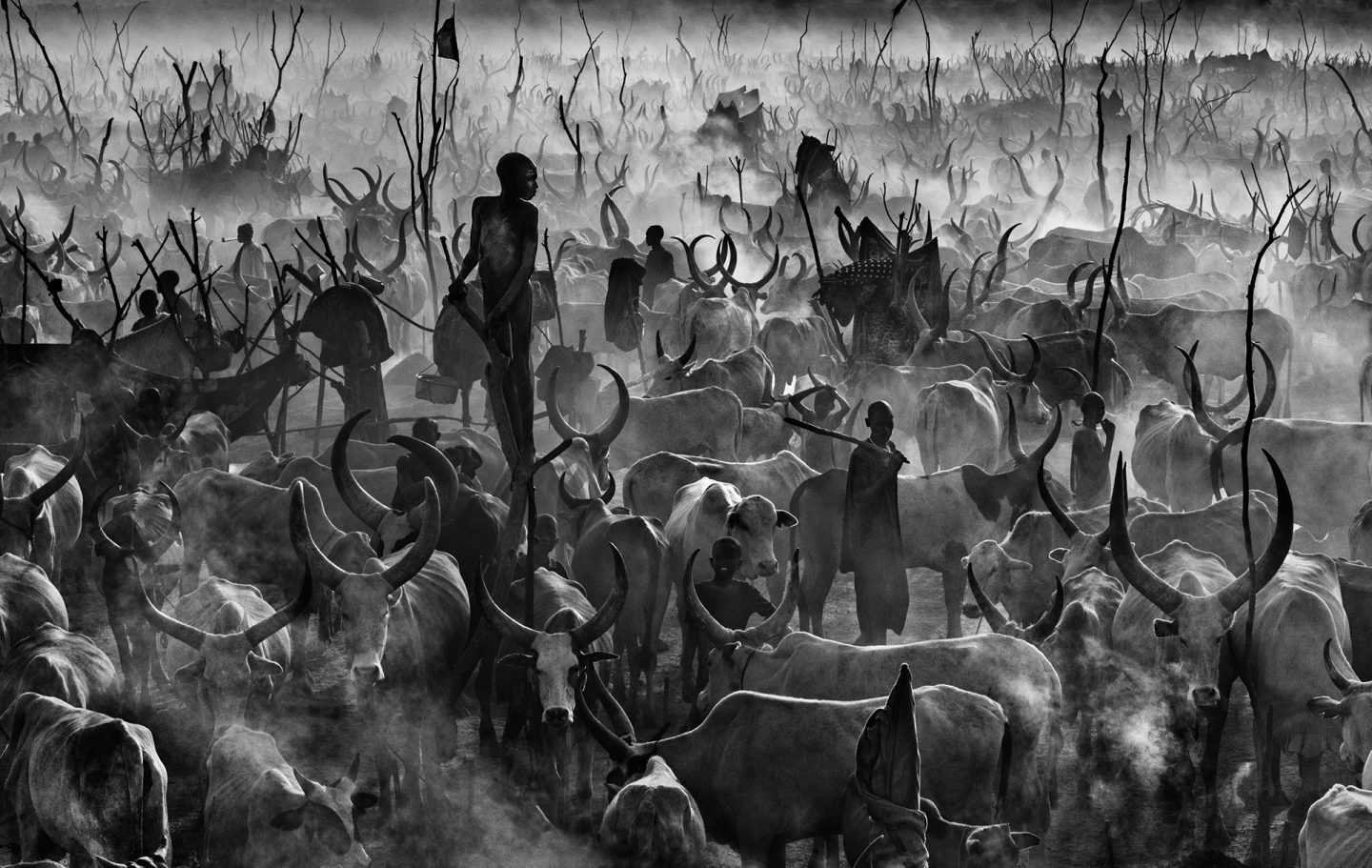 Mankind © David Yarrow
