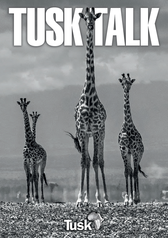 Tusk Talk 2017 cover
