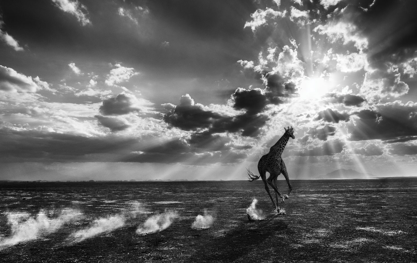 Heaven Can Wait © David Yarrow
