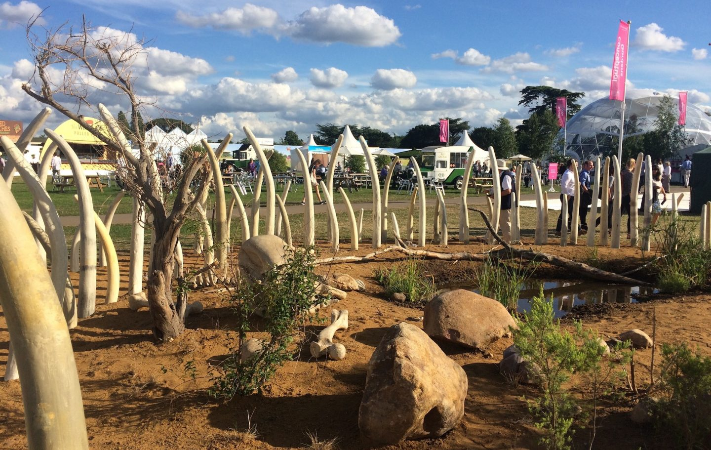 Tusk Garden Turns Heads at Hampton Court Flower Show