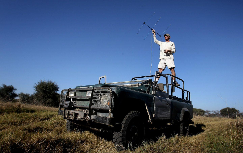 Tusk Trust - The Botswana Predator Conservation Trust