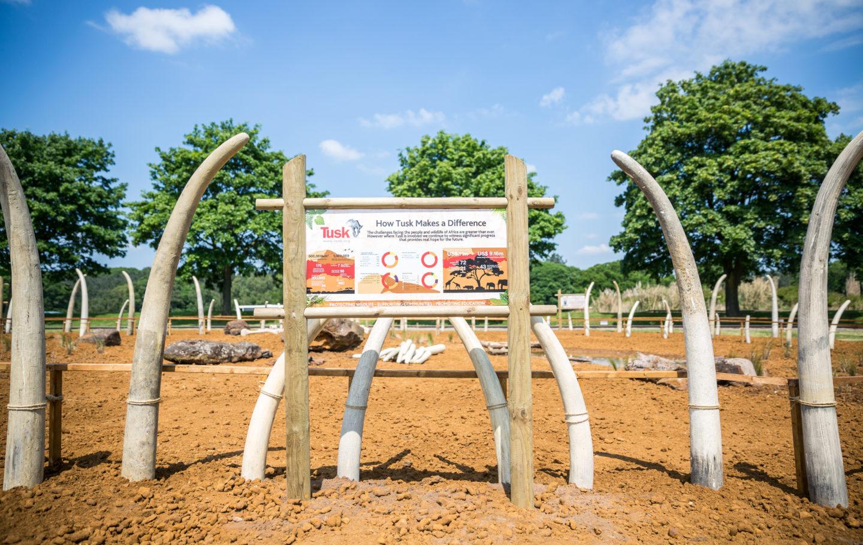 Tusk Garden - Woburn Safari Park May 2018 main