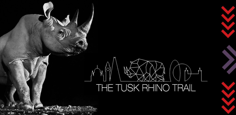 tusk the tusk rhino trail