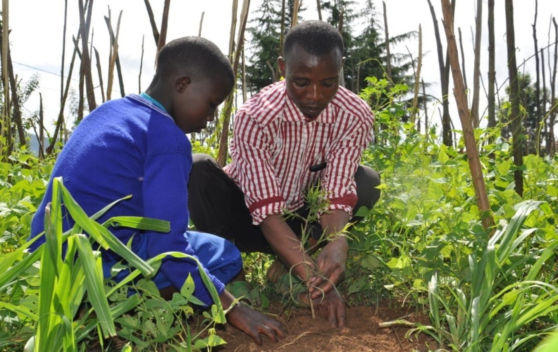 parent & child farming rwanda olivier