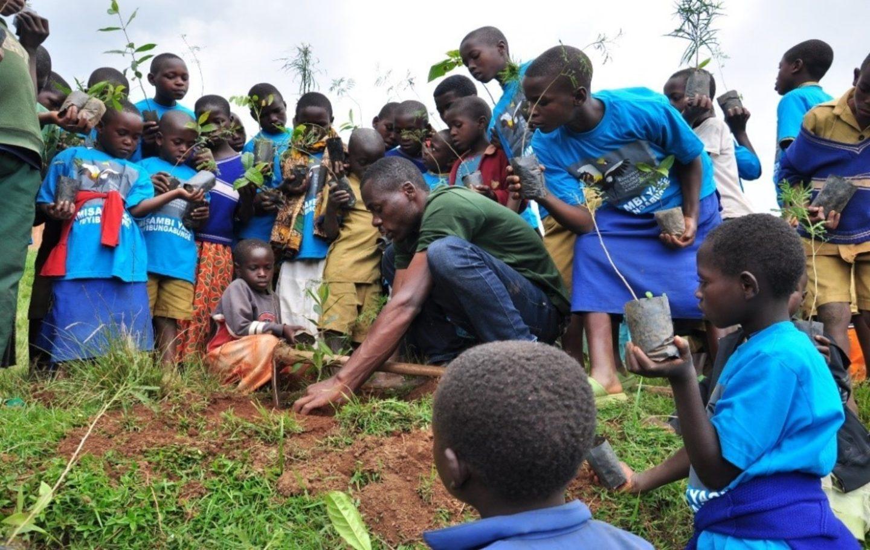 young treeplanters school clubs rwanda olivier