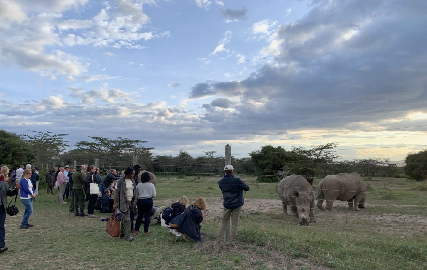 Symposium participants visiting the world's two remaining Northern White Rhino at Ol Pejeta Conservancy