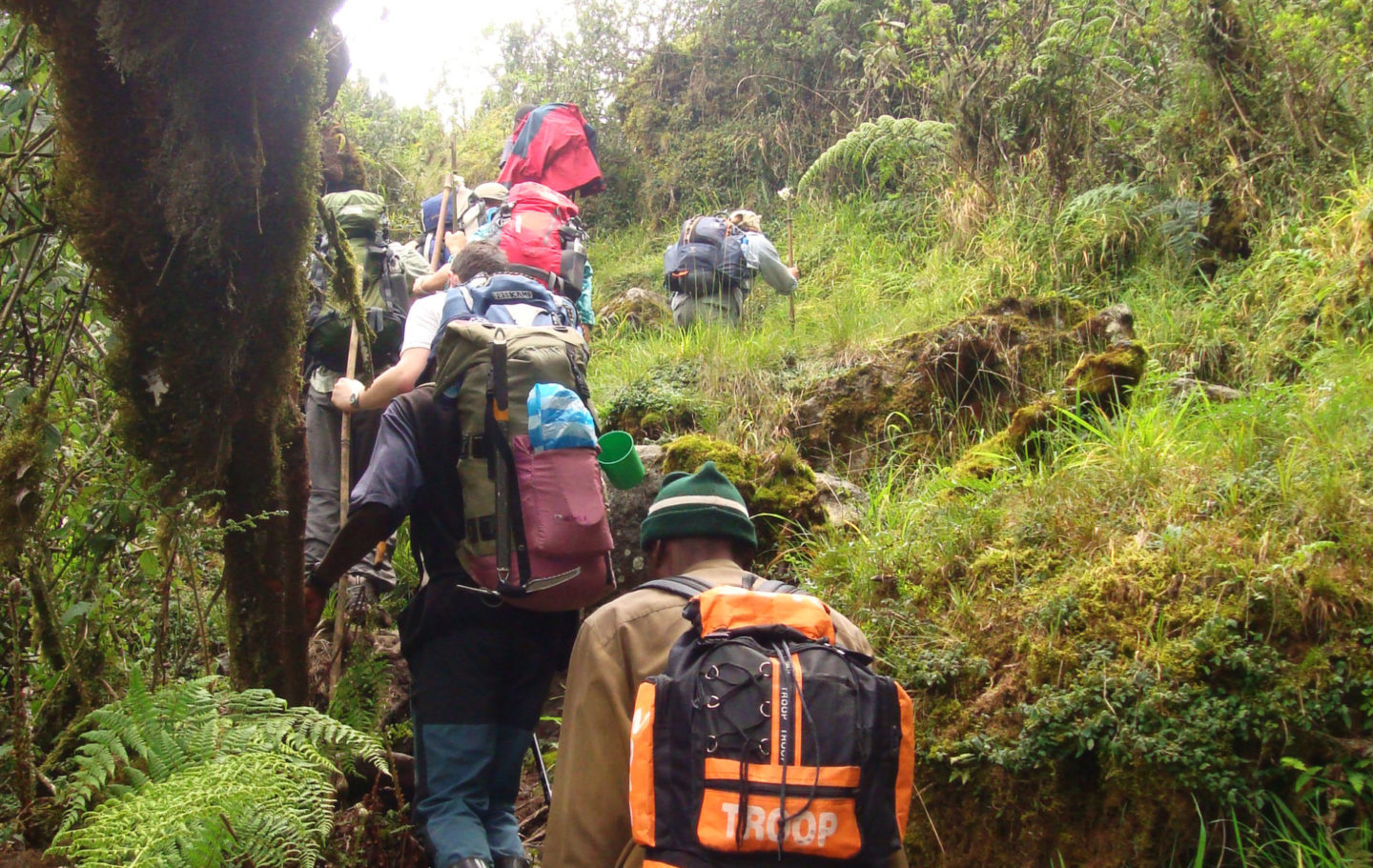 Rwenzori Mountain Challenge Trek