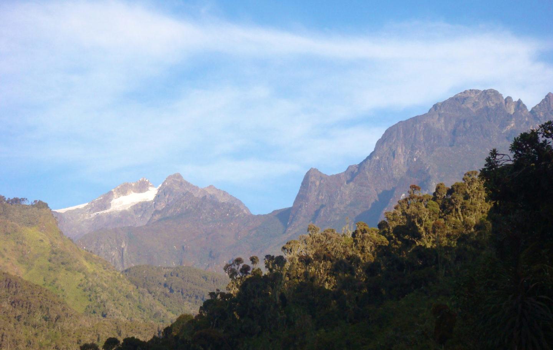 Rwenzori Mountain Peaks