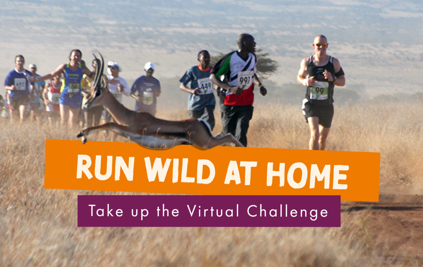 Virtual Lewa Safari Marathon