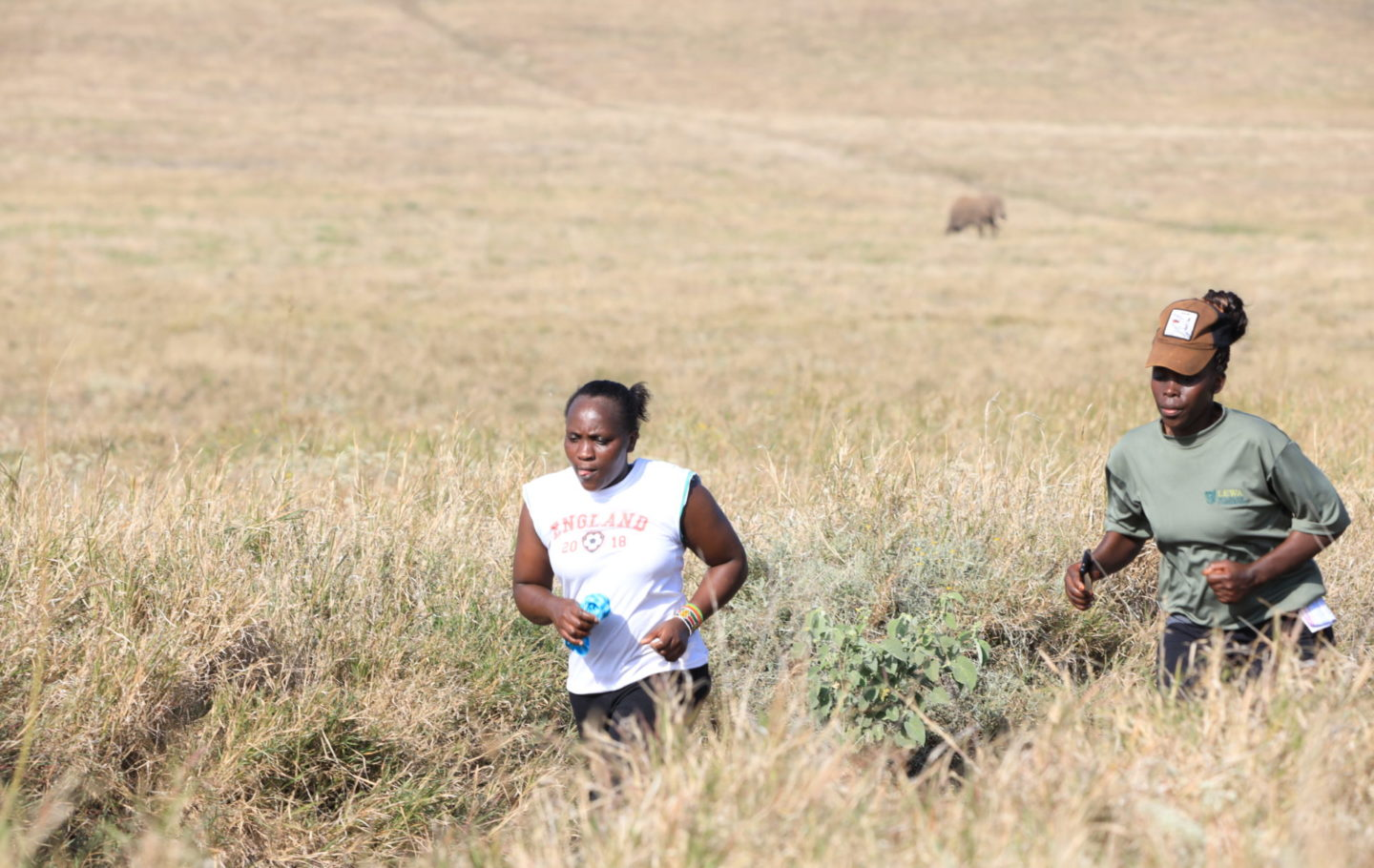 Virtual Lewa Safari Marathon 2020