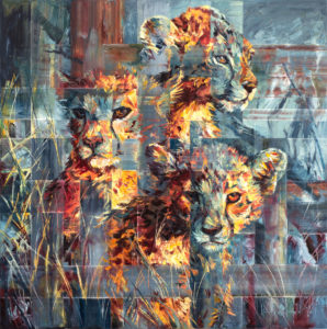 Cheetah Cubs Hiding by Hannah Shergold