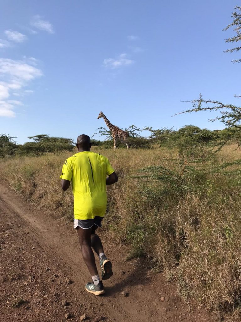 Running the Lewa Safari Marathon route