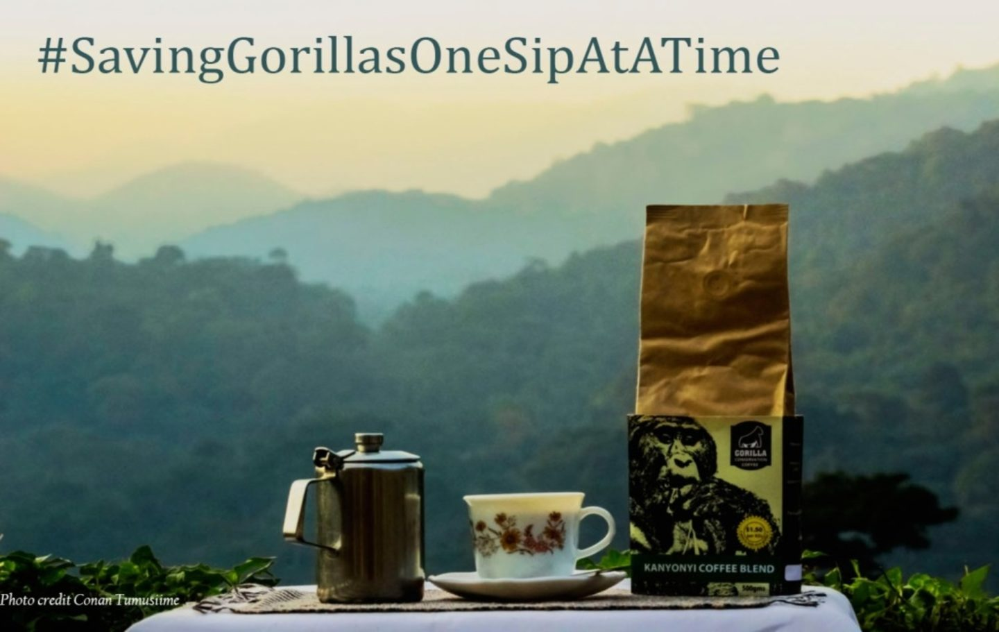 Gorilla-Conservation-Coffee-Coffee