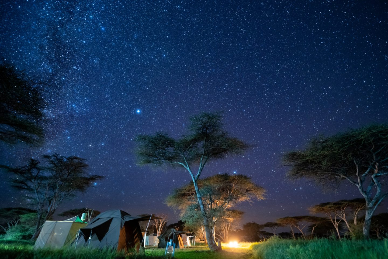 Trans-Serengeti Safari 2021