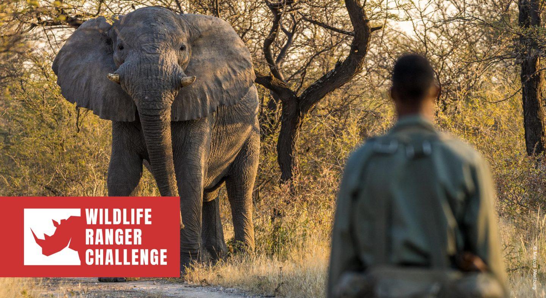 Wildlife Ranger Challenge